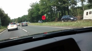 Giant Rememberence  Poppy
