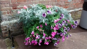 Half  a barrel of flowers