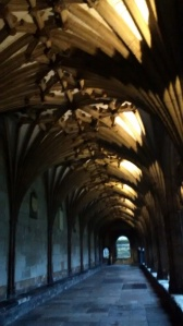 The amazing cloisters