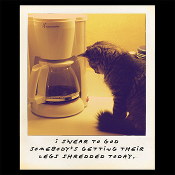 l__coffeepotcatshreddedtshirt