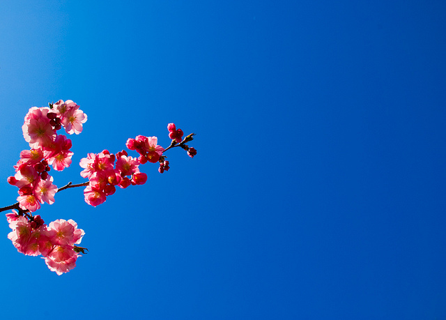 Blue Skies, Smiling At Me