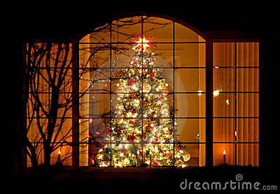 welcome-home-christmas-tree-window-3849728