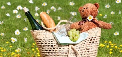 teddy-bear-picnic-426x202