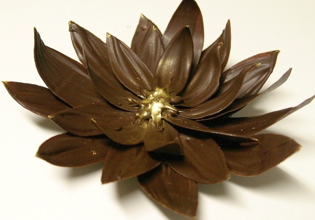 kats-chocolate-lotus-flower2