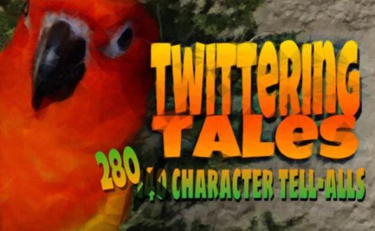 Twittering tales Kat Myrman